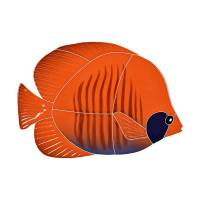 Pool Mosaics - Tropical Fish Mosaics - Artistry in Mosaics - Tiger Tang Fish Mosaic-Orange